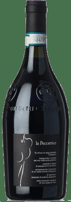 12,95 € Free Shipping   Red sparkling Bisi Bonarda Frizzante La Peccatrice D.O.C. Oltrepò Pavese Lombardia Italy Croatina Bottle 75 cl