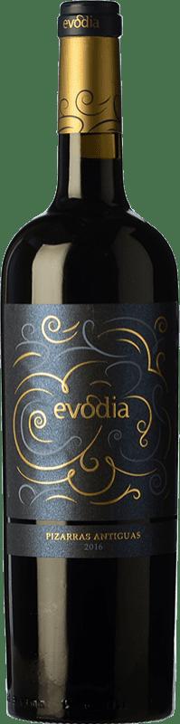 13,95 € Free Shipping   Red wine San Alejandro Evodia Pizarras Antiguas Crianza D.O. Calatayud Spain Grenache Bottle 75 cl