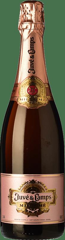 37,95 € Free Shipping   Rosé sparkling Juvé y Camps Millésimé Rosé Brut Gran Reserva D.O. Cava Spain Pinot Black Bottle 75 cl