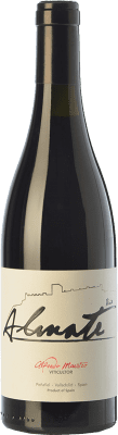 7,95 € Envoi gratuit | Vin rouge Maestro Tejero Viña Almate Joven I.G.P. Vino de la Tierra de Castilla y León Castille et Leon Espagne Tempranillo Bouteille 75 cl