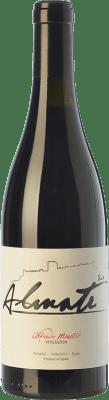 7,95 € Envío gratis | Vino tinto Maestro Tejero Viña Almate Joven I.G.P. Vino de la Tierra de Castilla y León Castilla y León España Tempranillo Botella 75 cl