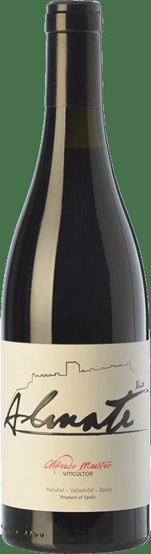 7,95 € Free Shipping | Red wine Maestro Tejero Viña Almate Joven I.G.P. Vino de la Tierra de Castilla y León Castilla y León Spain Tempranillo Bottle 75 cl