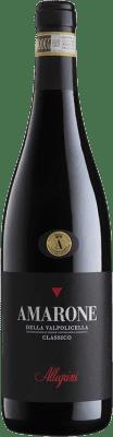 79,95 € Envoi gratuit | Vin rouge Allegrini Classico D.O.C.G. Amarone della Valpolicella Vénétie Italie Corvina, Rondinella, Corvinone, Oseleta Bouteille 75 cl