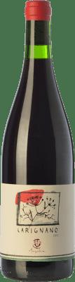 26,95 € Envoi gratuit | Vin rouge Ampeleia I.G.T. Costa Toscana Toscane Italie Carignan Bouteille 75 cl