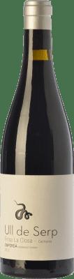 33,95 € Envío gratis | Vino tinto Arché Pagés Ull de Serp Carinyena Crianza D.O. Empordà Cataluña España Cariñena Botella 75 cl