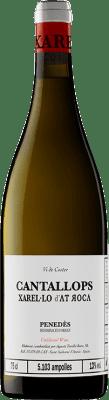 24,95 € Envío gratis | Vino blanco AT Roca Cantallops Crianza D.O. Penedès Cataluña España Xarel·lo Botella 75 cl