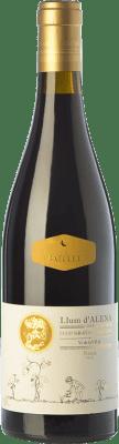 19,95 € Kostenloser Versand | Rotwein Cal Batllet Llum d'Alena Crianza D.O.Ca. Priorat Katalonien Spanien Grenache, Carignan Flasche 75 cl