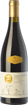 19,95 € Envío gratis | Vino tinto Cal Batllet Llum d'Alena Crianza D.O.Ca. Priorat Cataluña España Garnacha, Cariñena Botella 75 cl