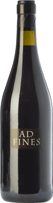 39,95 € Free Shipping | Red wine Can Ràfols Ad Fines Joven 2009 D.O. Penedès Catalonia Spain Pinot Black Bottle 75 cl