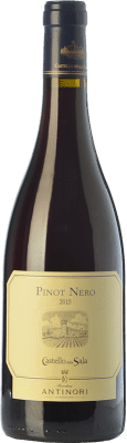 61,95 € Free Shipping | Red wine Castello della Sala Pinot Nero I.G.T. Umbria Umbria Italy Pinot Black Bottle 75 cl