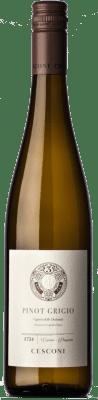 17,95 € Free Shipping | White wine Cesconi Pinot Grigio I.G.T. Vigneti delle Dolomiti Trentino Italy Pinot Grey Bottle 75 cl