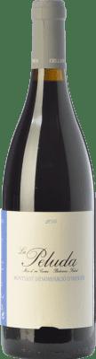 24,95 € Free Shipping   Red wine Comunica La Peluda Joven D.O. Montsant Catalonia Spain Grenache Hairy Bottle 75 cl