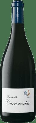 44,95 € Envío gratis   Vino blanco Contador Qué Bonito Cacareaba Crianza D.O.Ca. Rioja La Rioja España Viura, Malvasía, Garnacha Blanca Botella 75 cl