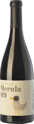 17,95 € Envoi gratuit | Vin rouge DG Merula Joven 2009 D.O. Penedès Catalogne Espagne Merlot Bouteille 75 cl