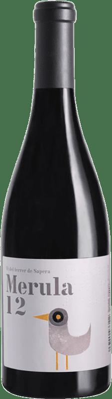 12,95 € Envío gratis | Vino tinto DG Merula D.O. Penedès Cataluña España Merlot Botella 75 cl