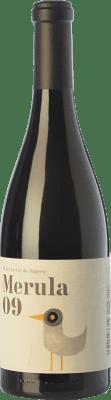 17,95 € Envoi gratuit | Vin rouge DG Merula Joven 2011 D.O. Penedès Catalogne Espagne Merlot Bouteille 75 cl
