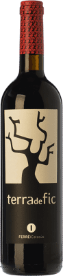 18,95 € Free Shipping | Red wine Ferré i Catasús Terra 1 Cep Joven 2010 D.O.Ca. Priorat Catalonia Spain Grenache, Carignan Bottle 75 cl | Thousands of wine lovers trust us to get the best price guarantee, free shipping always and hassle-free shopping and returns.