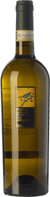 12,95 € Envío gratis | Vino blanco Feudi di San Gregorio D.O.C.G. Fiano d'Avellino Campania Italia Fiano Botella 75 cl