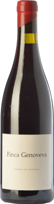 31,95 € Free Shipping | Red wine Forjas del Salnés Goliardo Finca Genoveva Crianza Spain Caíño Black Bottle 75 cl