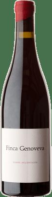 25,95 € Envío gratis | Vino tinto Forjas del Salnés Goliardo Finca Genoveva Crianza España Caíño Tinto Botella 75 cl