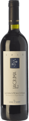 14,95 € Free Shipping   Red wine Giusti Piergiovanni D.O.C. Lacrima di Morro d'Alba Marche Italy Lacrima Bottle 75 cl