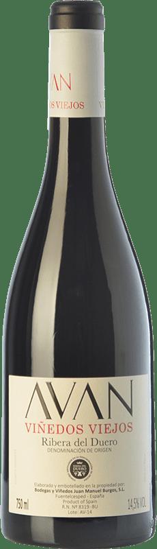 16,95 € Envío gratis | Vino tinto Juan Manuel Burgos Avan Viñedos Viejos Crianza D.O. Ribera del Duero Castilla y León España Tempranillo Botella 75 cl