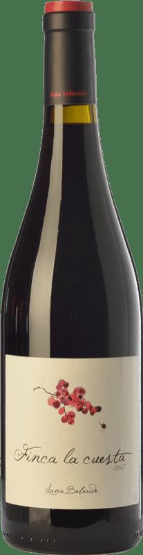 9,95 € Free Shipping | Red wine Luna Beberide Finca La Cuesta Crianza D.O. Bierzo Castilla y León Spain Mencía Bottle 75 cl