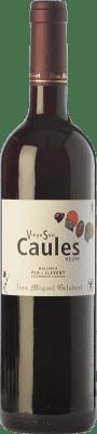 8,95 € Envío gratis | Vino tinto Miquel Gelabert Vinya Son Caules Negre Crianza D.O. Pla i Llevant Islas Baleares España Tempranillo, Syrah, Callet, Fogoneu, Mantonegro Botella 75 cl