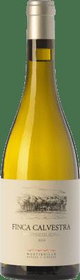 19,95 € Free Shipping | White wine Mustiguillo Finca Calvestra Crianza D.O.P. Vino de Pago El Terrerazo Valencian Community Spain Merseguera Bottle 75 cl
