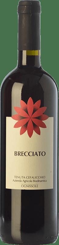 6,95 € Envío gratis | Vino tinto Ognissole Brecciato I.G.T. Puglia Puglia Italia Nero di Troia Botella 75 cl