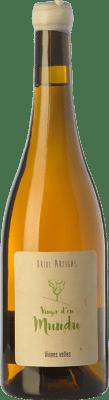 26,95 € Free Shipping | White wine Oriol Artigas Vinya d'en Mundu Crianza Spain Xarel·lo Bottle 75 cl