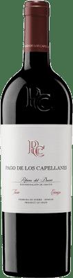 24,95 € Free Shipping | Red wine Pago de los Capellanes Crianza D.O. Ribera del Duero Castilla y León Spain Tempranillo Bottle 75 cl
