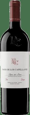46,95 € Free Shipping | Red wine Pago de los Capellanes Crianza D.O. Ribera del Duero Castilla y León Spain Tempranillo, Cabernet Sauvignon Magnum Bottle 1,5 L