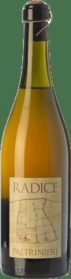 16,95 € Free Shipping | Red wine Paltrinieri Radice D.O.C. Lambrusco di Sorbara Emilia-Romagna Italy Lambrusco di Sorbara Bottle 75 cl
