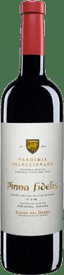 31,95 € Free Shipping | Red wine Pinna Fidelis Vendimia Seleccionada Crianza D.O. Ribera del Duero Castilla y León Spain Tempranillo Bottle 75 cl