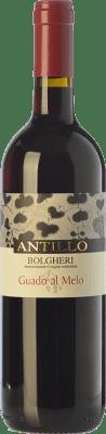 19,95 € Free Shipping | Red wine Guado al Melo Antillo D.O.C. Bolgheri Tuscany Italy Cabernet Sauvignon, Sangiovese, Petit Verdot Bottle 75 cl