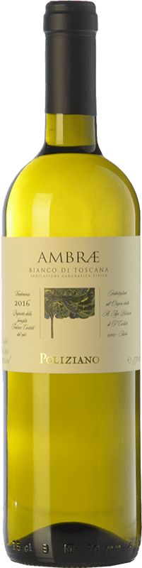 15,95 € Envoi gratuit | Vin blanc Poliziano Ambrae I.G.T. Toscana Toscane Italie Chardonnay, Sauvignon Bouteille 75 cl