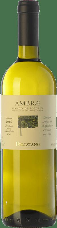 15,95 € Free Shipping   White wine Poliziano Ambrae I.G.T. Toscana Tuscany Italy Chardonnay, Sauvignon Bottle 75 cl