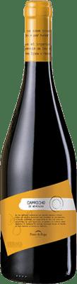 29,95 € Free Shipping | Red wine Ponte da Boga Capricho Crianza D.O. Ribeira Sacra Galicia Spain Merenzao Bottle 75 cl