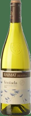 7,95 € Envoi gratuit | Vin blanc Raimat Ventada D.O. Costers del Segre Catalogne Espagne Grenache Blanc Bouteille 75 cl