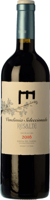 13,95 € Envoi gratuit   Vin rouge Resalte Vendimia Seleccionada Joven D.O. Ribera del Duero Castille et Leon Espagne Tempranillo Bouteille 75 cl