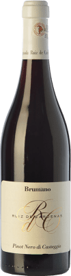 31,95 € Free Shipping | Red wine Ruiz de Cardenas Brumano D.O.C. Oltrepò Pavese Lombardia Italy Pinot Black Bottle 75 cl
