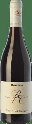 26,95 € Envoi gratuit | Vin rouge Ruiz de Cardenas Brumano D.O.C. Oltrepò Pavese Lombardia Italie Pinot Noir Bouteille 75 cl