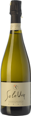 19,95 € Free Shipping | White sparkling SoloUva Brut D.O.C.G. Franciacorta Lombardia Italy Chardonnay Bottle 75 cl. | Thousands of wine lovers trust us to get the best price guarantee, free shipping always and hassle-free shopping and returns.