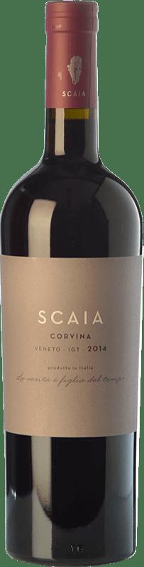 11,95 € Free Shipping | Red wine Tenuta Sant'Antonio Scaia I.G.T. Veneto Veneto Italy Corvina Bottle 75 cl