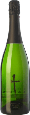 7,95 € Free Shipping | White sparkling Terrer de la Creu Brut Nature Joven D.O. Cava Catalonia Spain Macabeo, Xarel·lo, Parellada Bottle 75 cl. | Thousands of wine lovers trust us to get the best price guarantee, free shipping always and hassle-free shopping and returns.