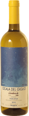 16,95 € Free Shipping | White wine Bibi Graetz Cicala del Giglio I.G.T. Toscana Tuscany Italy Ansonica Bottle 75 cl