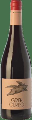 6,95 € Envoi gratuit   Vin rouge Wine Love Gran Cerdo Joven Espagne Tempranillo, Graciano Bouteille 75 cl