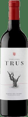 9,95 € Envío gratis | Vino tinto Trus Roble D.O. Ribera del Duero Castilla y León España Tempranillo Botella 75 cl