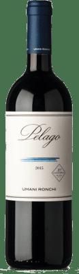 34,95 € Free Shipping | Red wine Umani Ronchi Pelago I.G.T. Marche Marche Italy Merlot, Cabernet Sauvignon, Montepulciano Bottle 75 cl